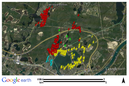 Plymouth's Future Generation Wind impact zone
